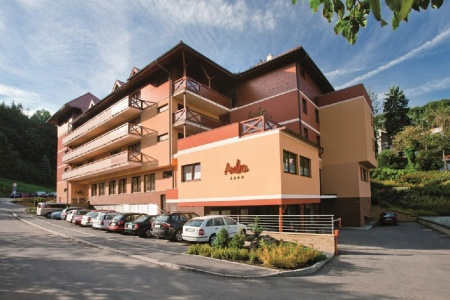 Велнес отель резиденция Амбра Лугачовице